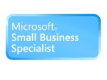MS small business